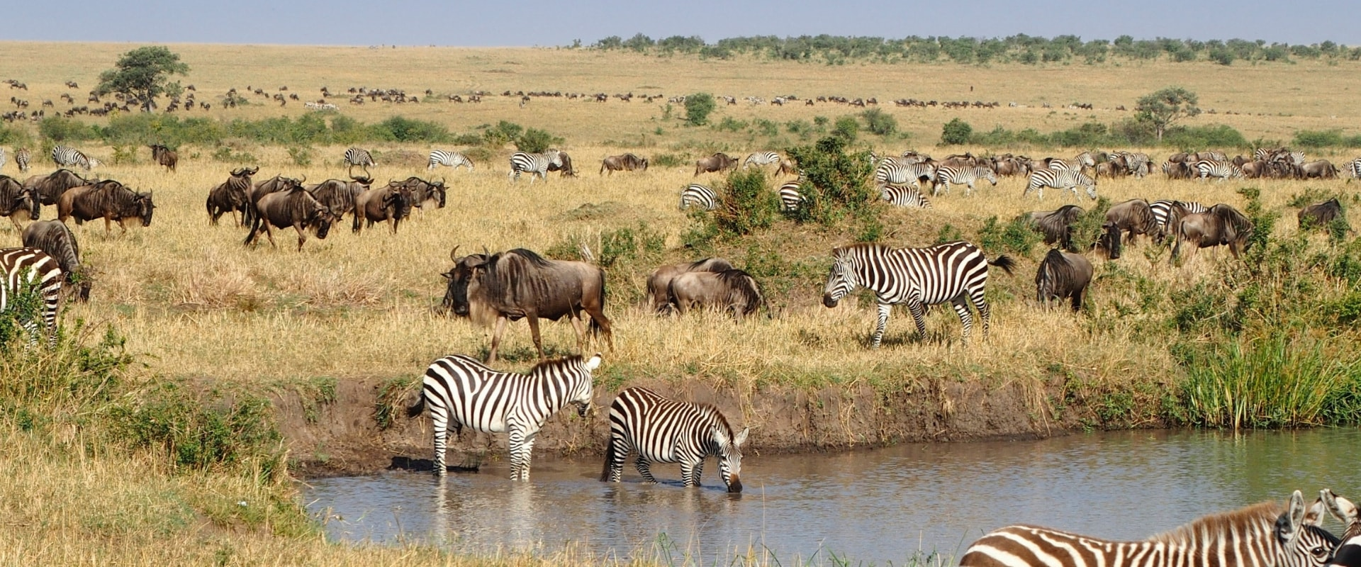 6 Days Masai Mara Honeymoon Package