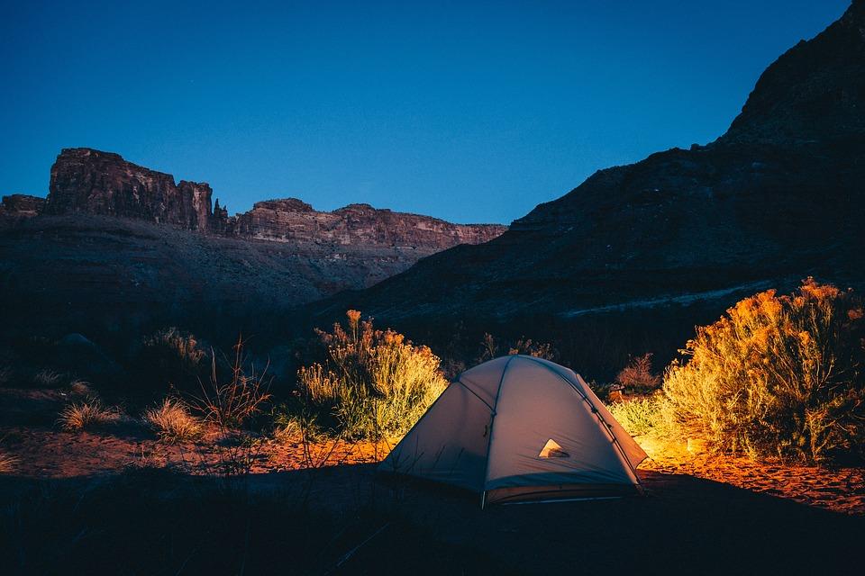 Budget Camp Safari